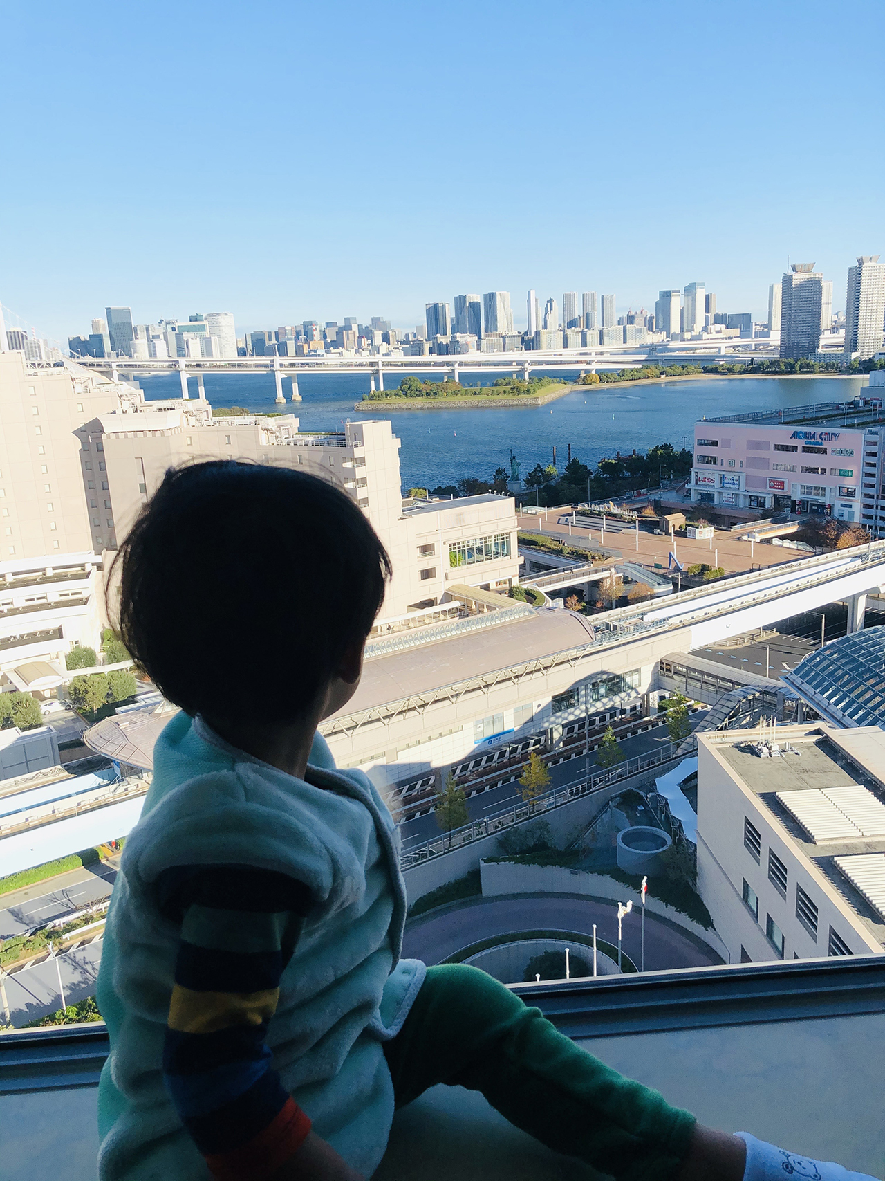 GRAND NIKKO TOKYO DAIBA(グランドニッコー東京 台場)の投稿写真6