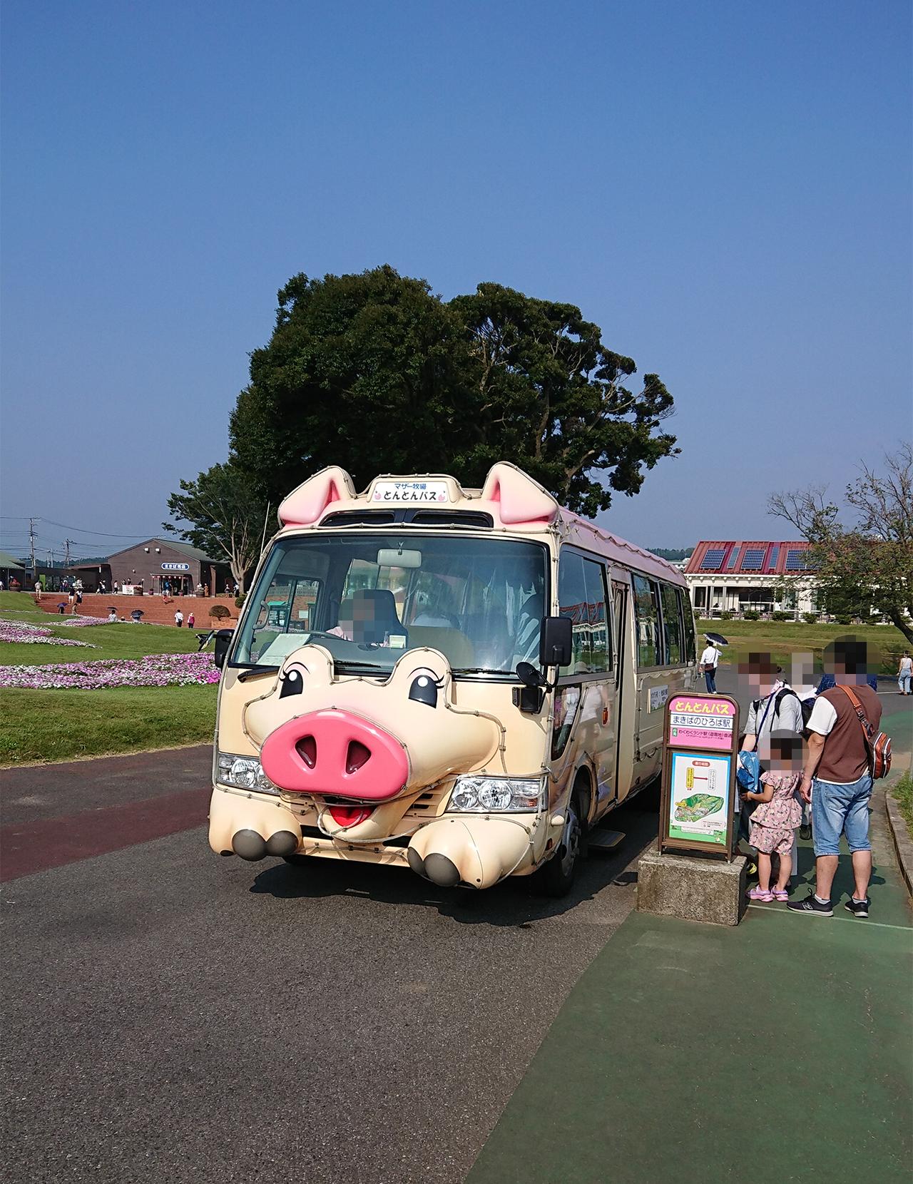 とんとんバスの写真
