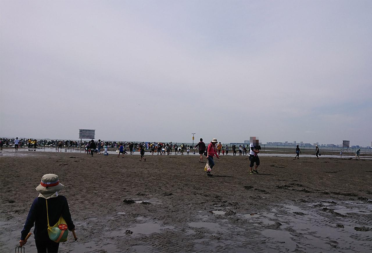 ふなばし三番瀬海浜公園の画像