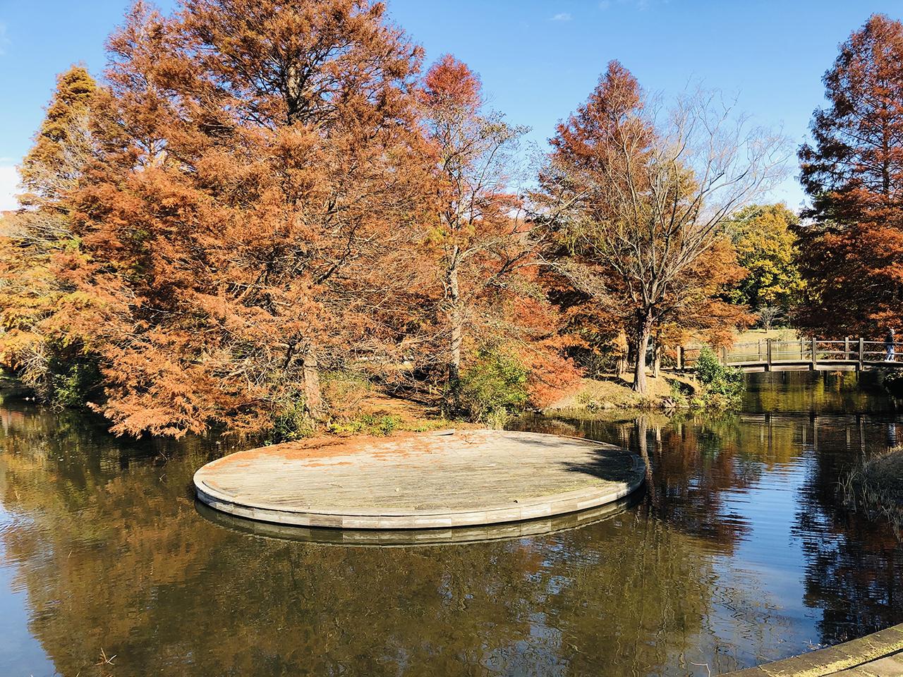 太陽の池の写真