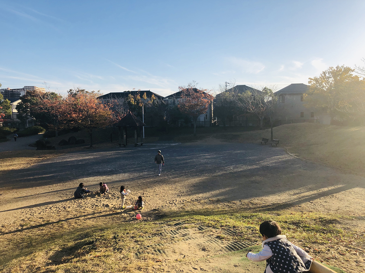 公園の写真3