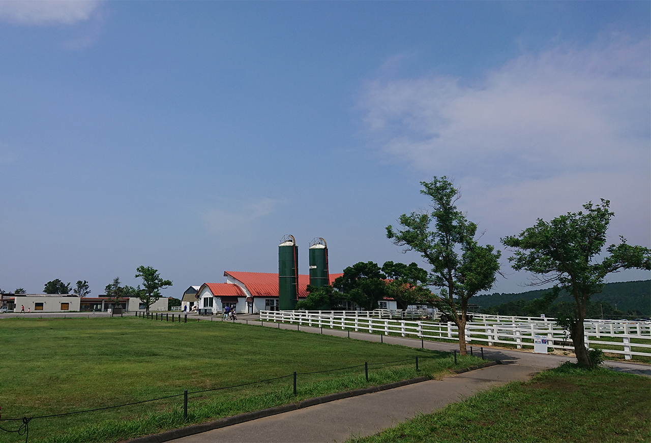 うしの牧場の写真