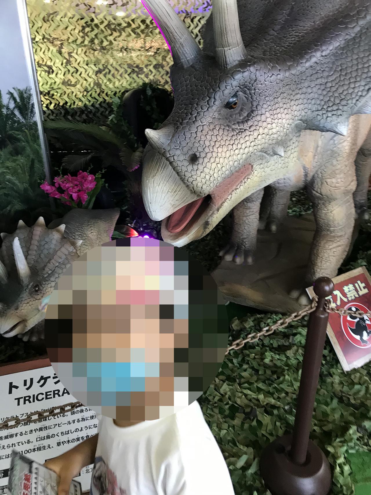恐竜パーク内の写真