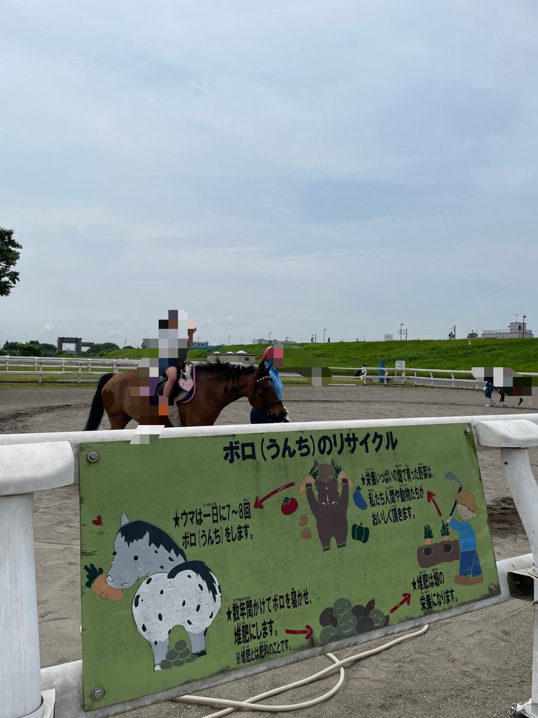 ポニーに乗馬している子どもの写真2