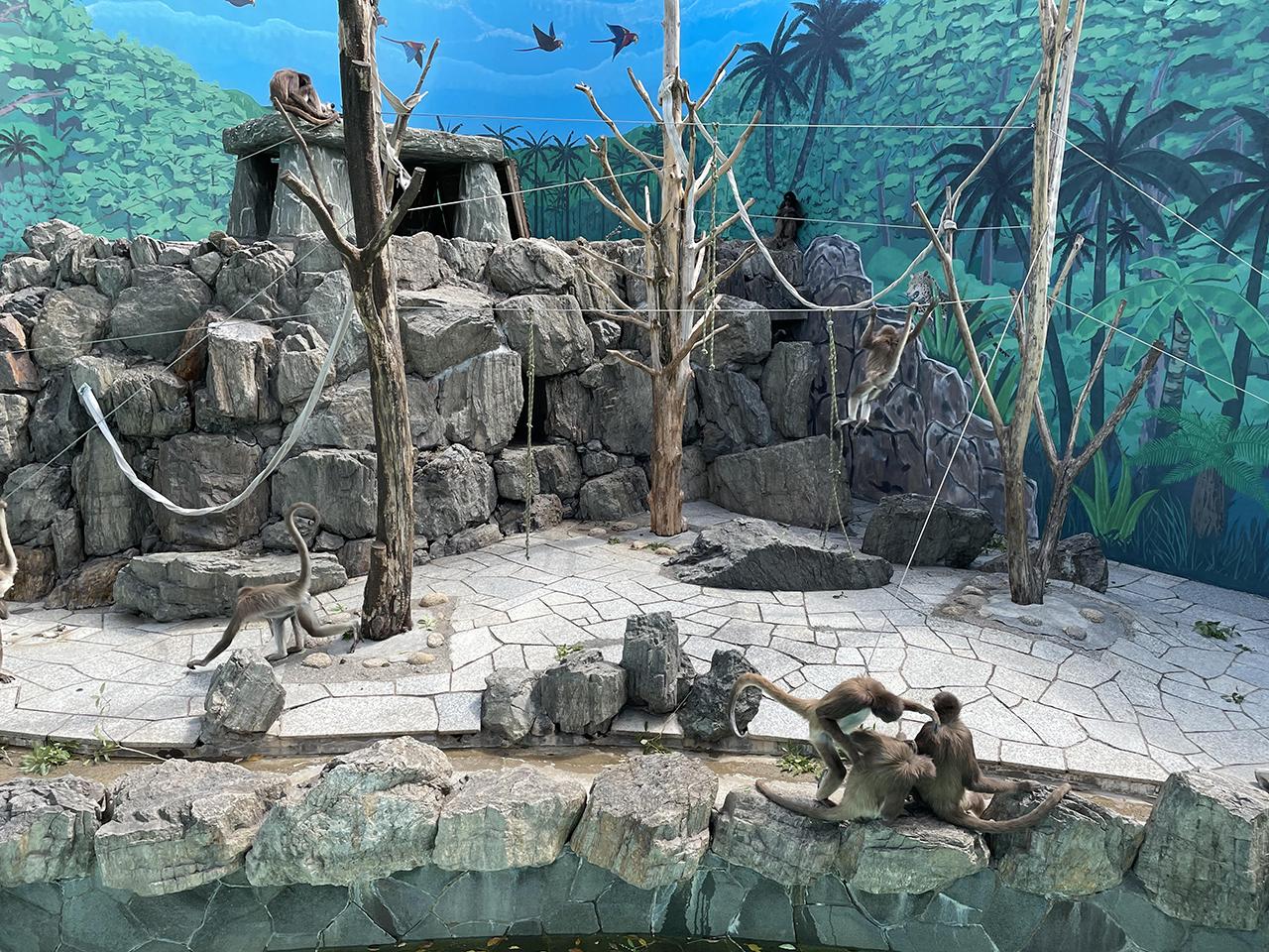 江戸川区自然動物園の投稿写真6