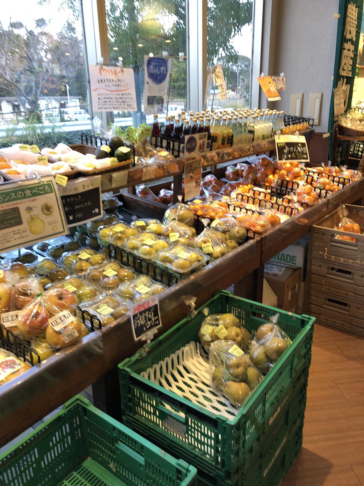 陳列棚の野菜の写真2