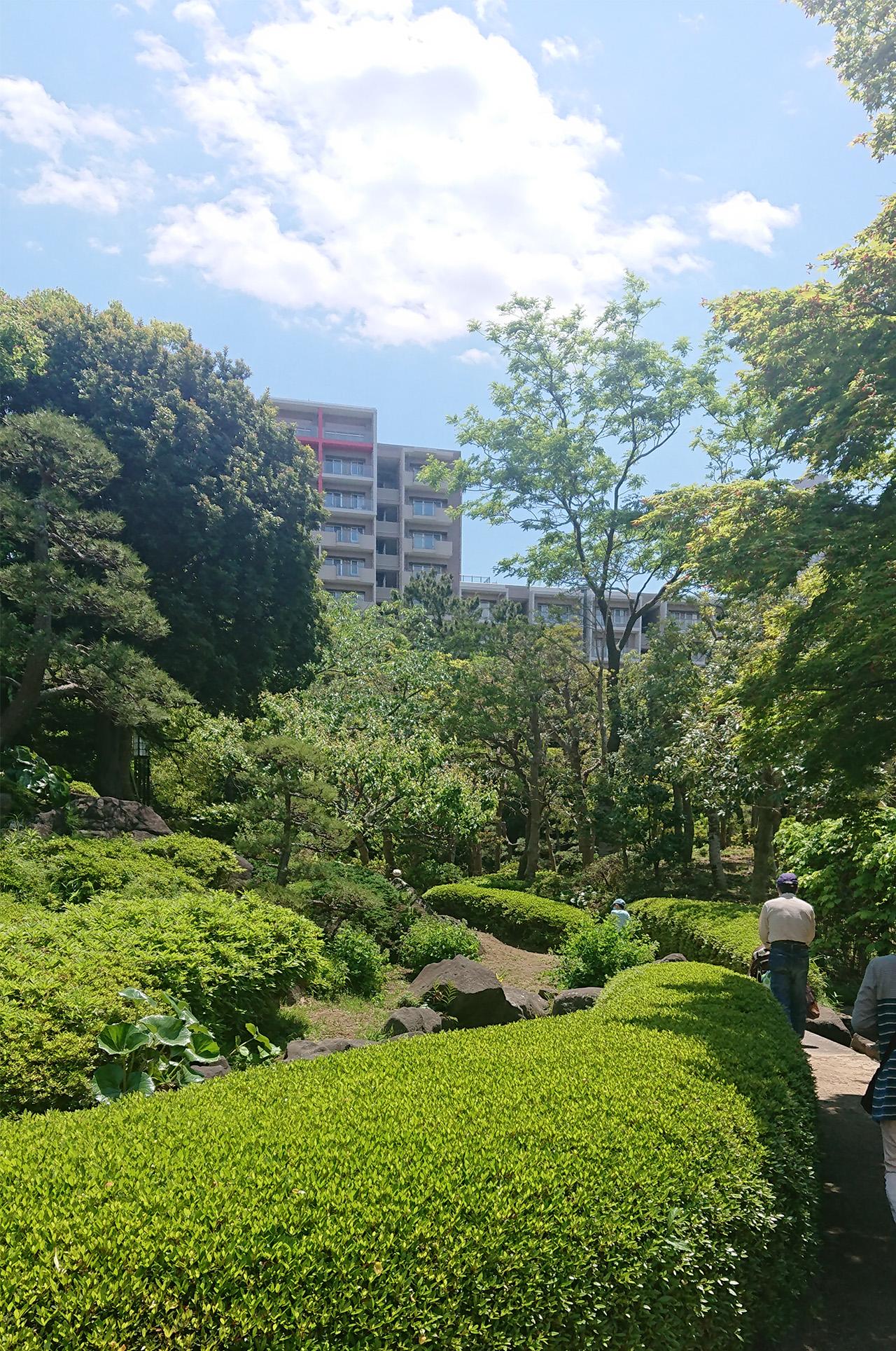 見浜園の日本庭園の写真