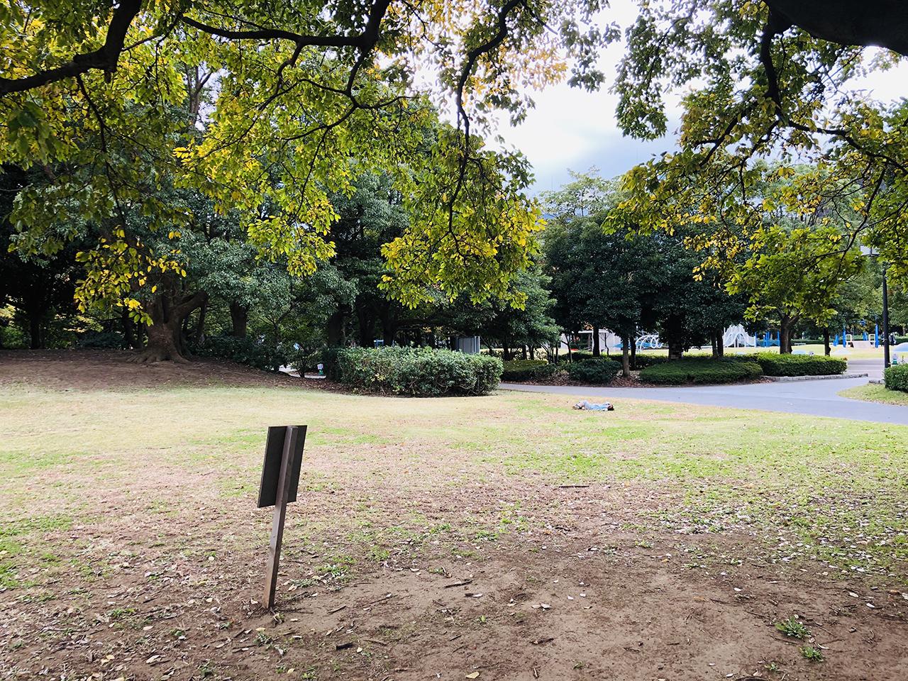 大芝生広場の写真2