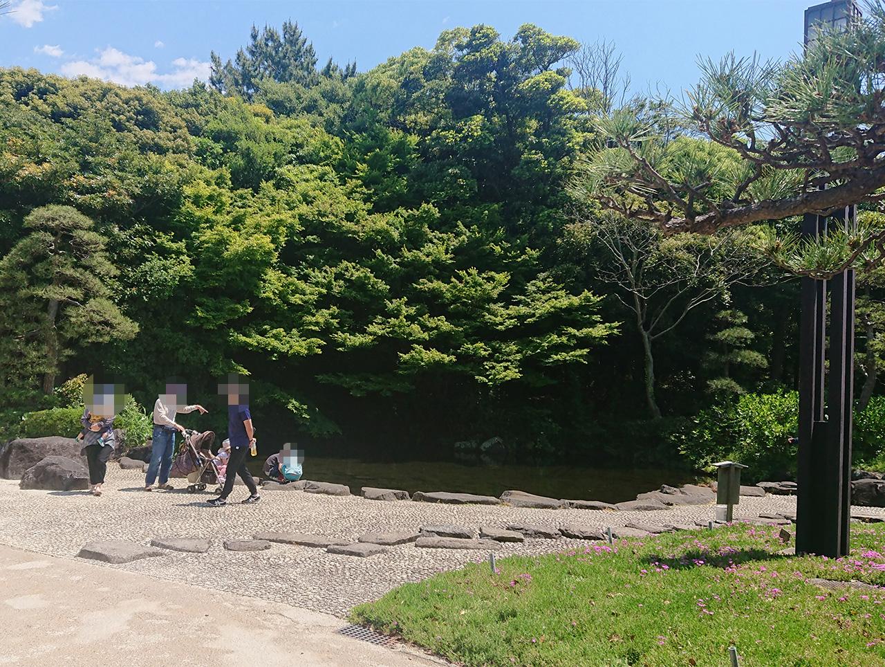 見浜園の外の池の写真