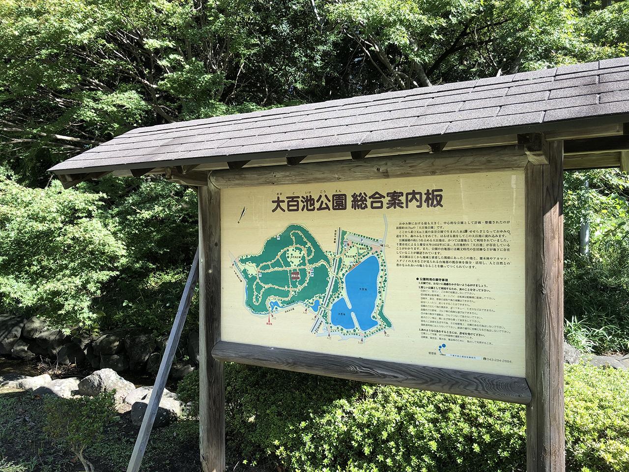 大百池公園の画像