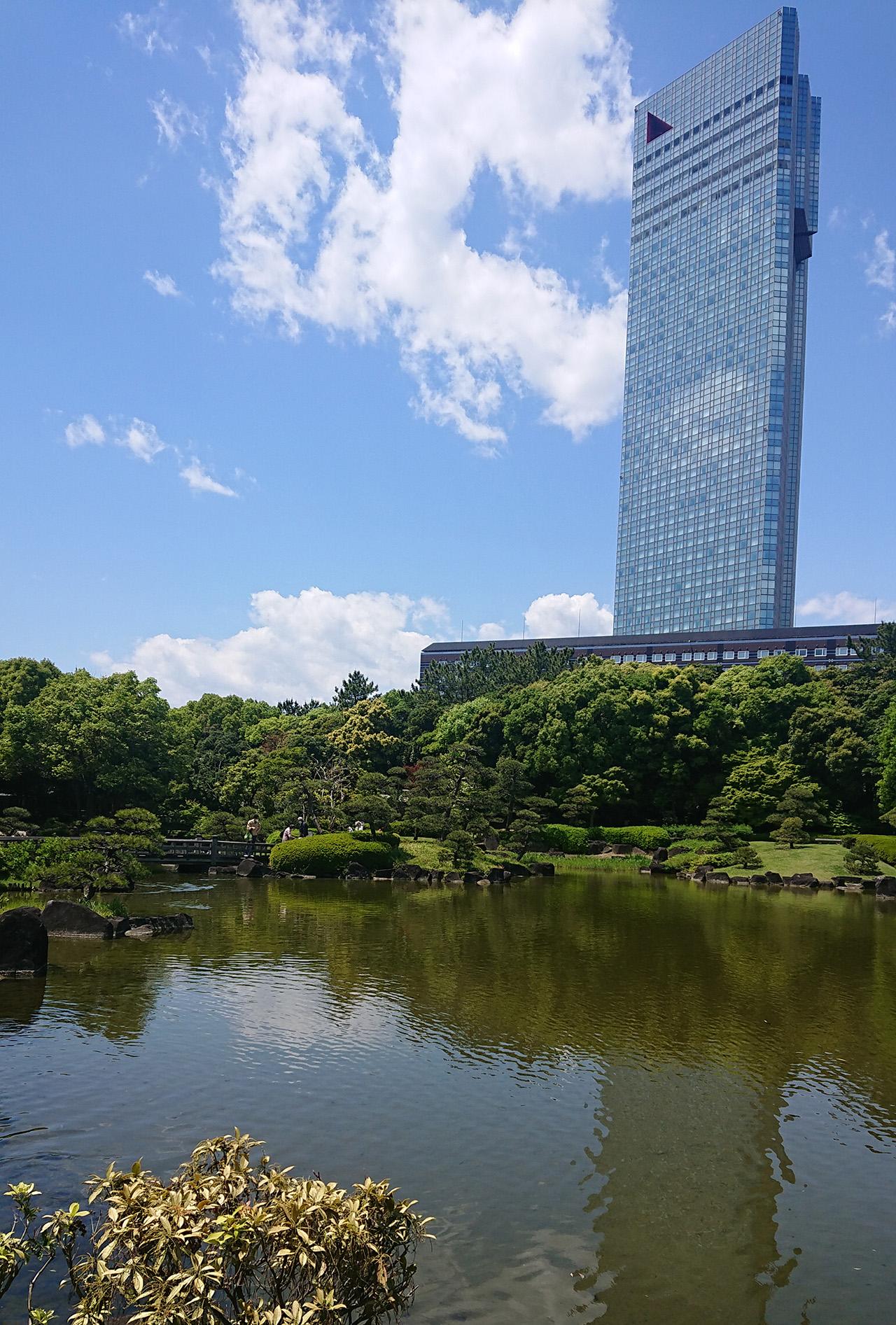 高層ビルと池の写真