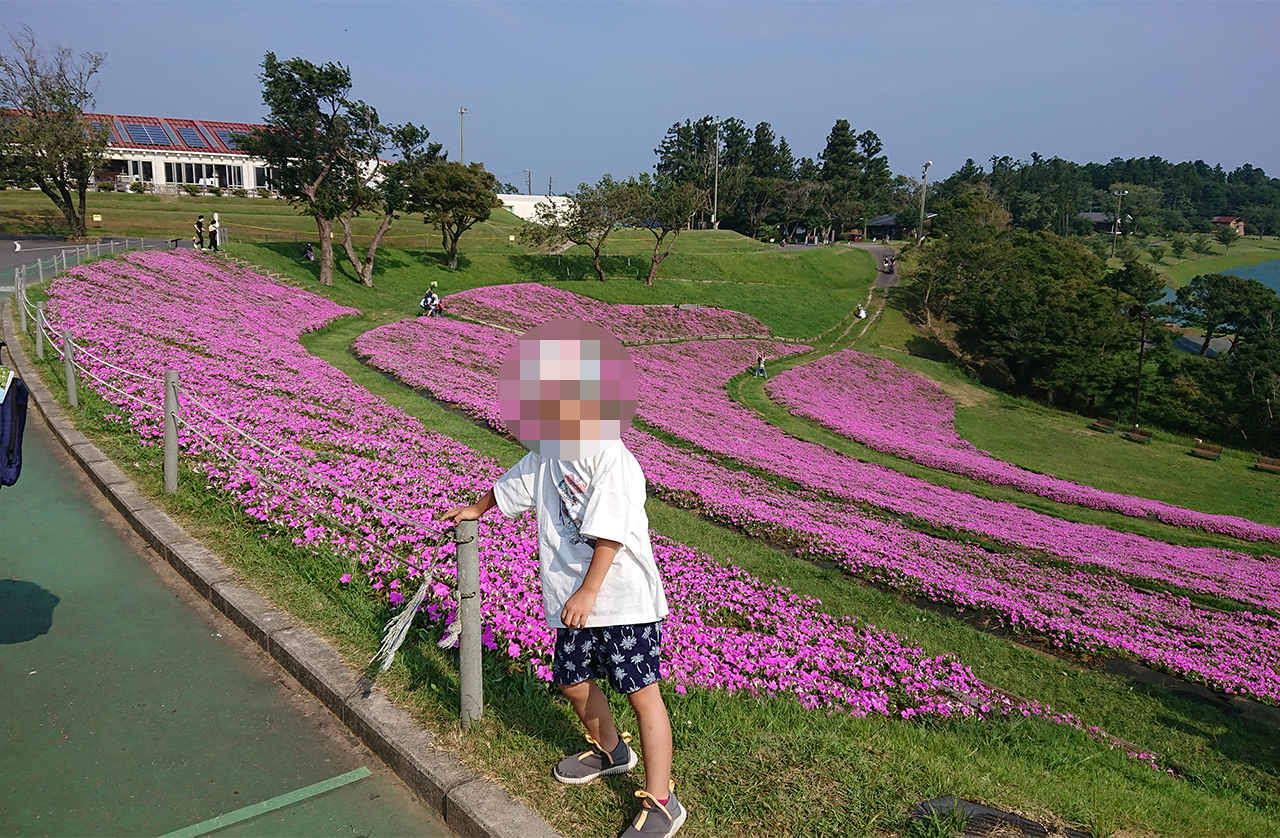 花畑の前で拗ねる子供の写真