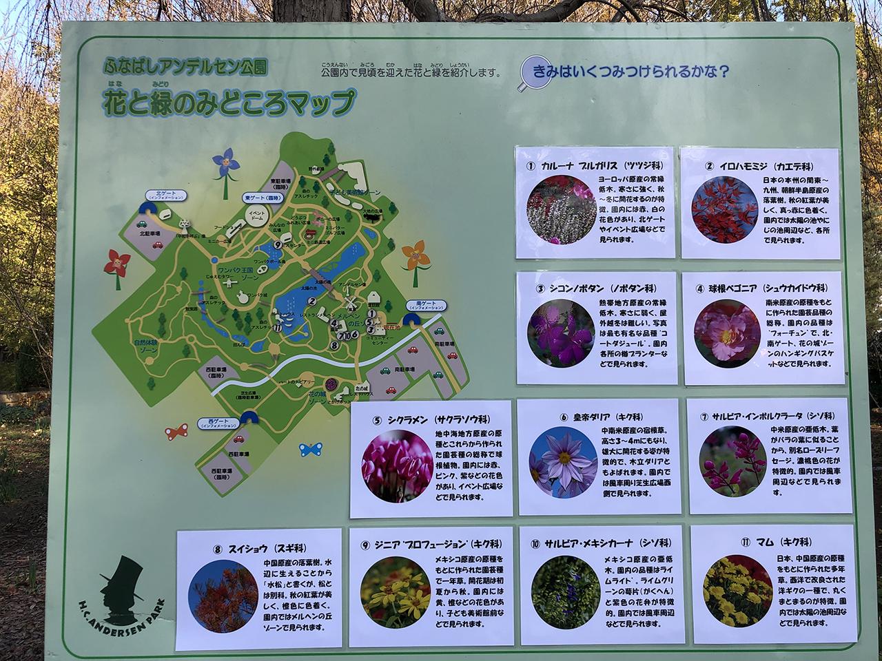 アンデルセン公園の花と緑のみどころマップの写真