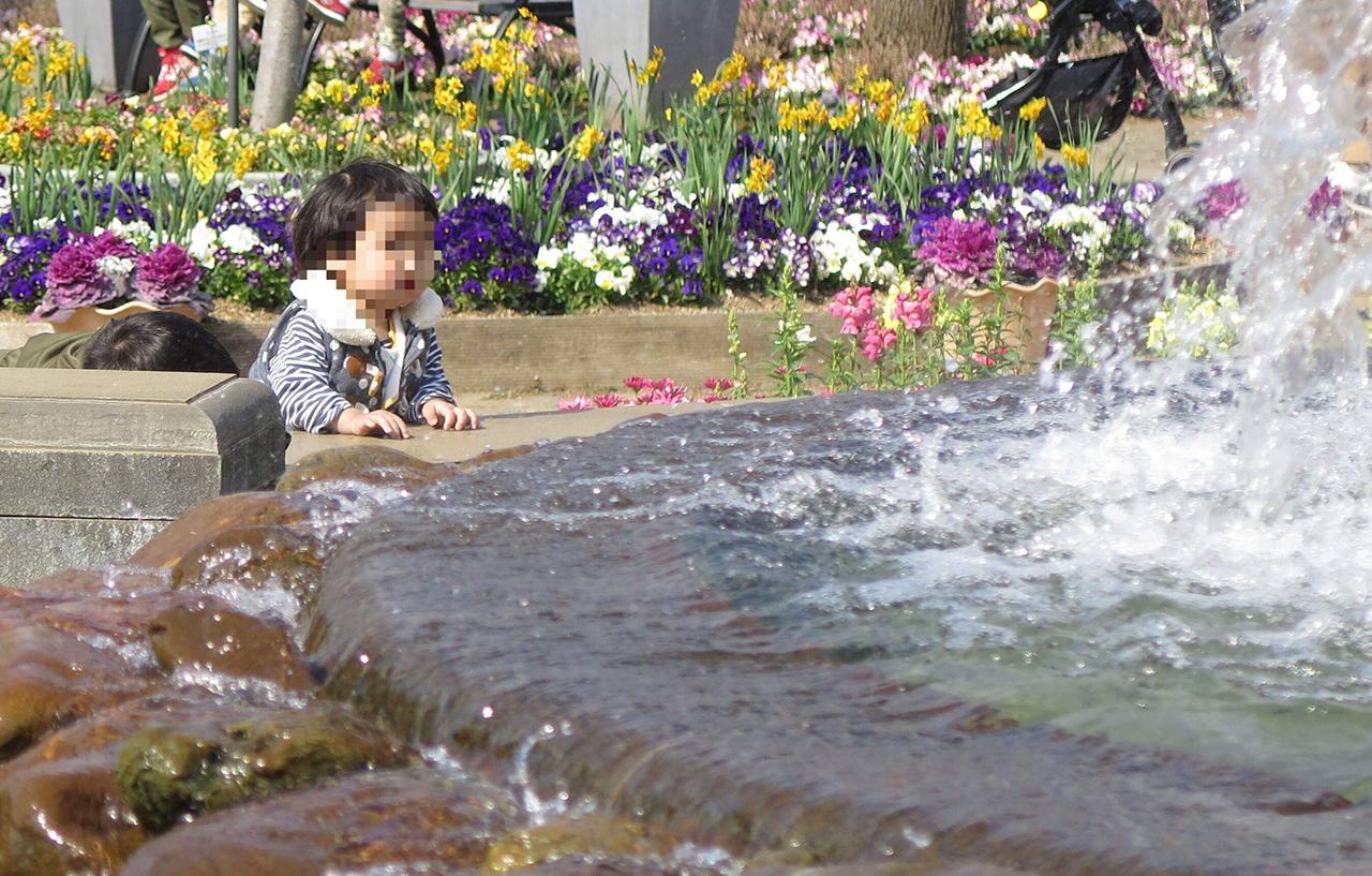噴水の写真2
