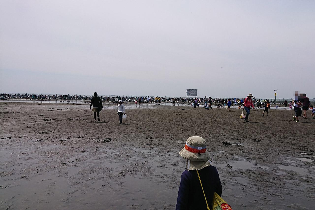 潮干狩りをする人々の写真