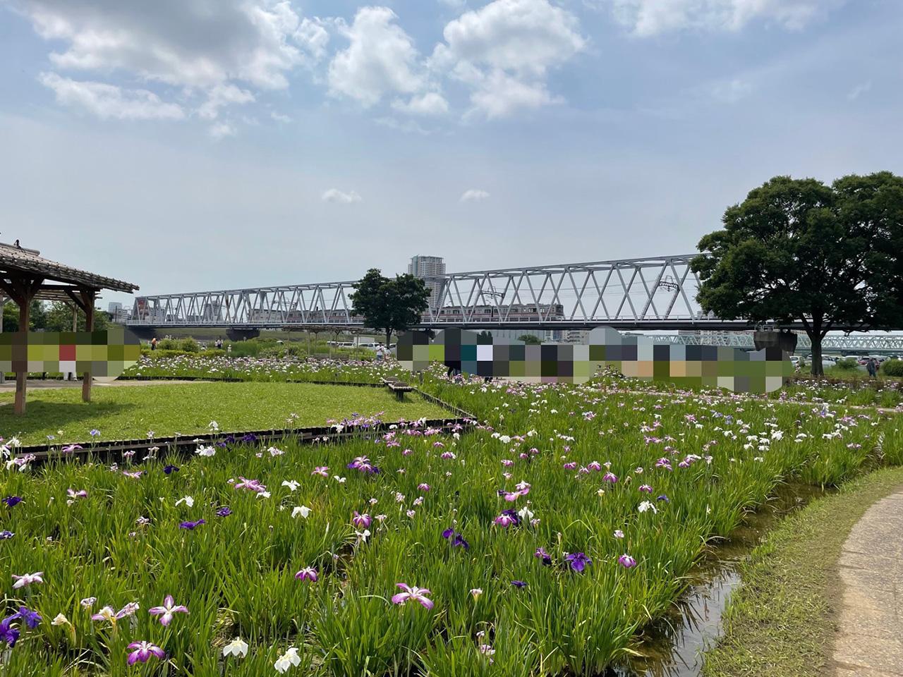 京成線の電車が走る陸橋の写真2
