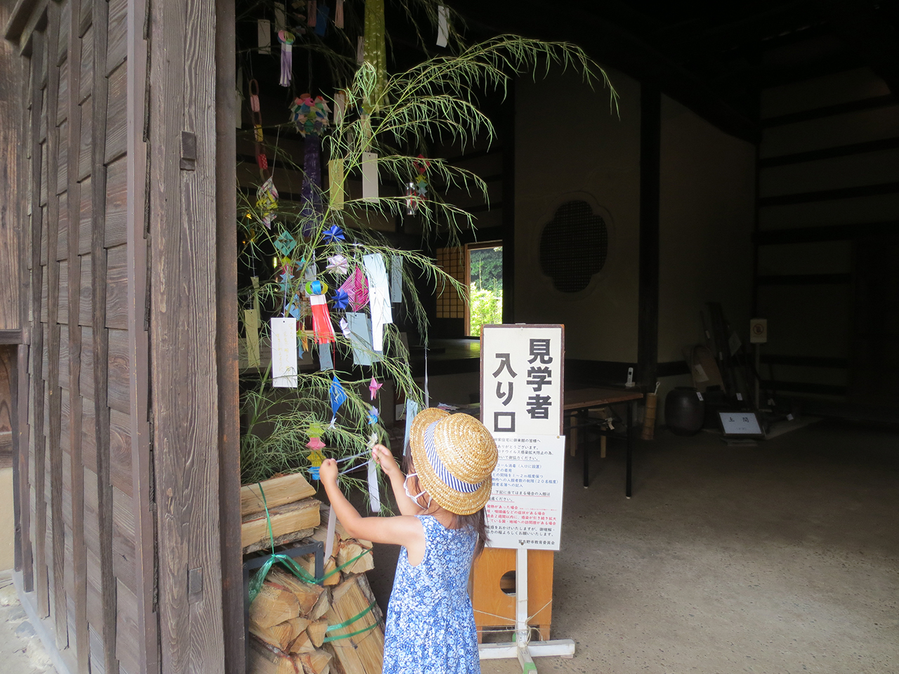 笹に短冊を飾る子供の写真