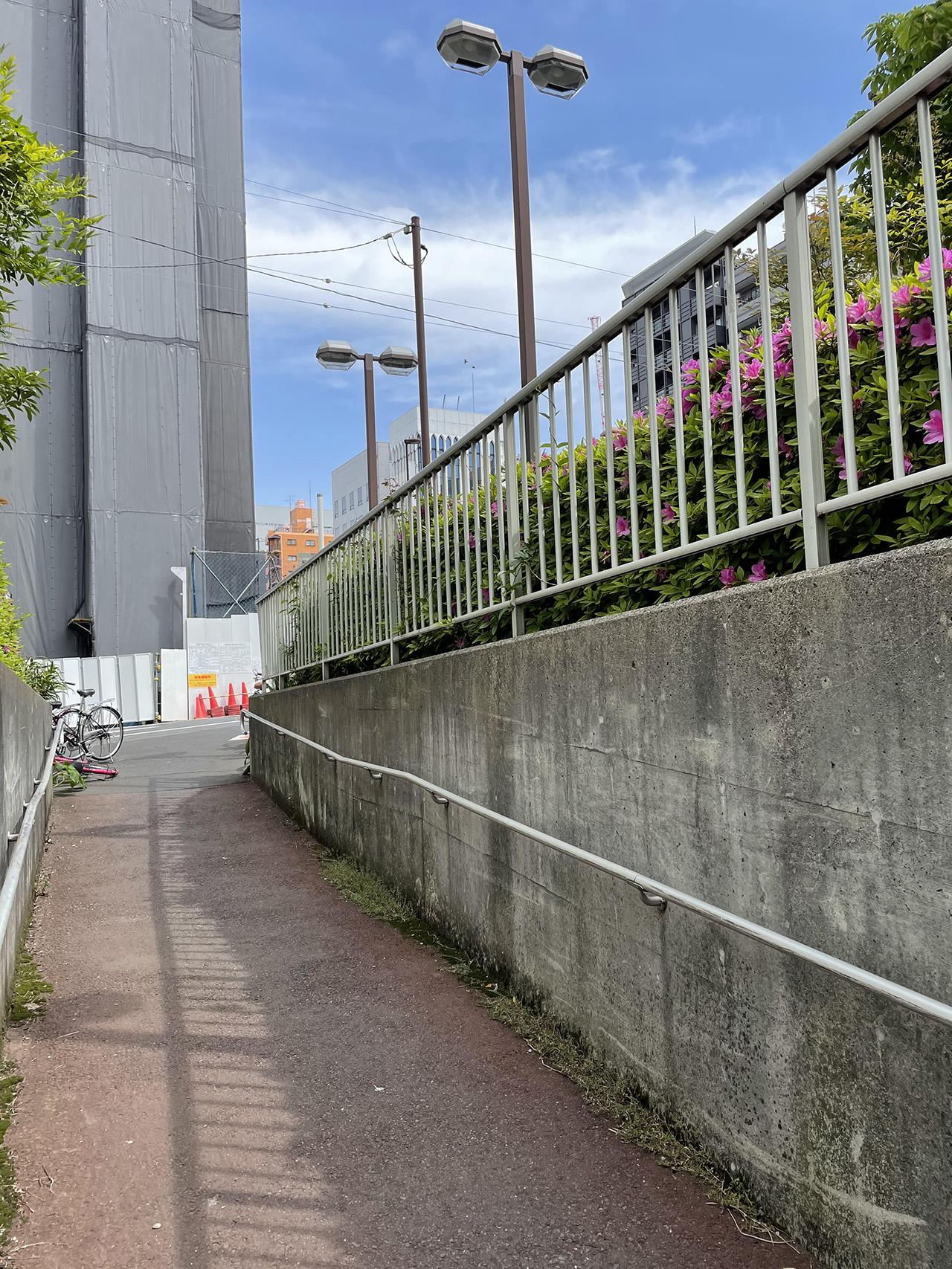 自転車レーンの写真