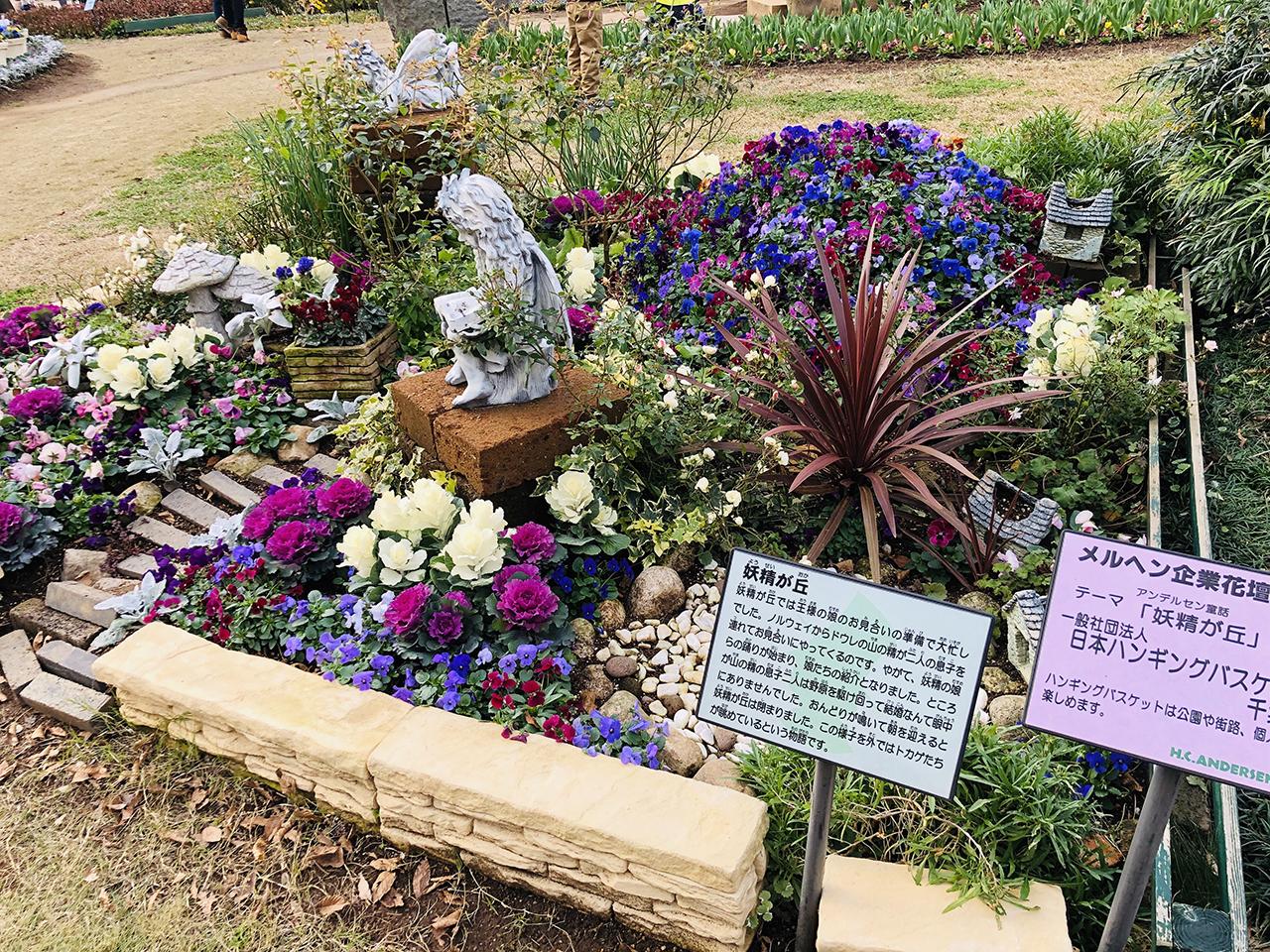 花の写真6