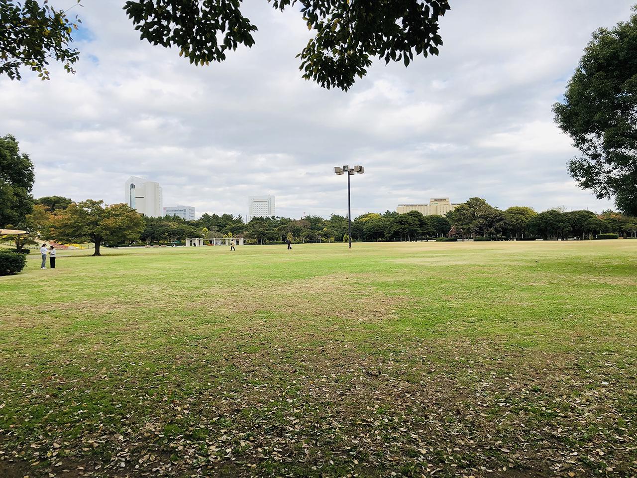 大芝生広場の写真