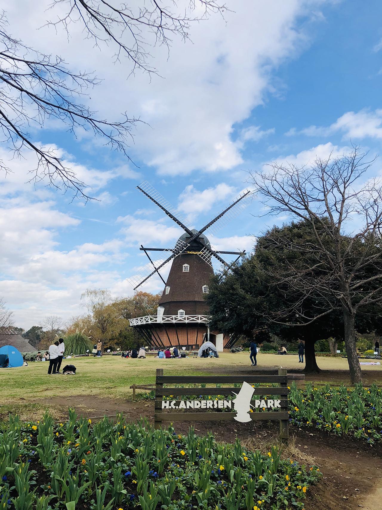 風車の写真3