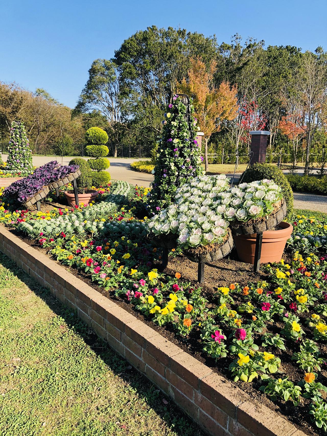 四季の庭の写真