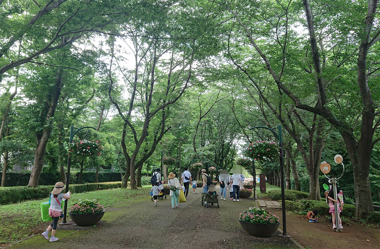 木々に囲まれた北ゲート入口付近の写真