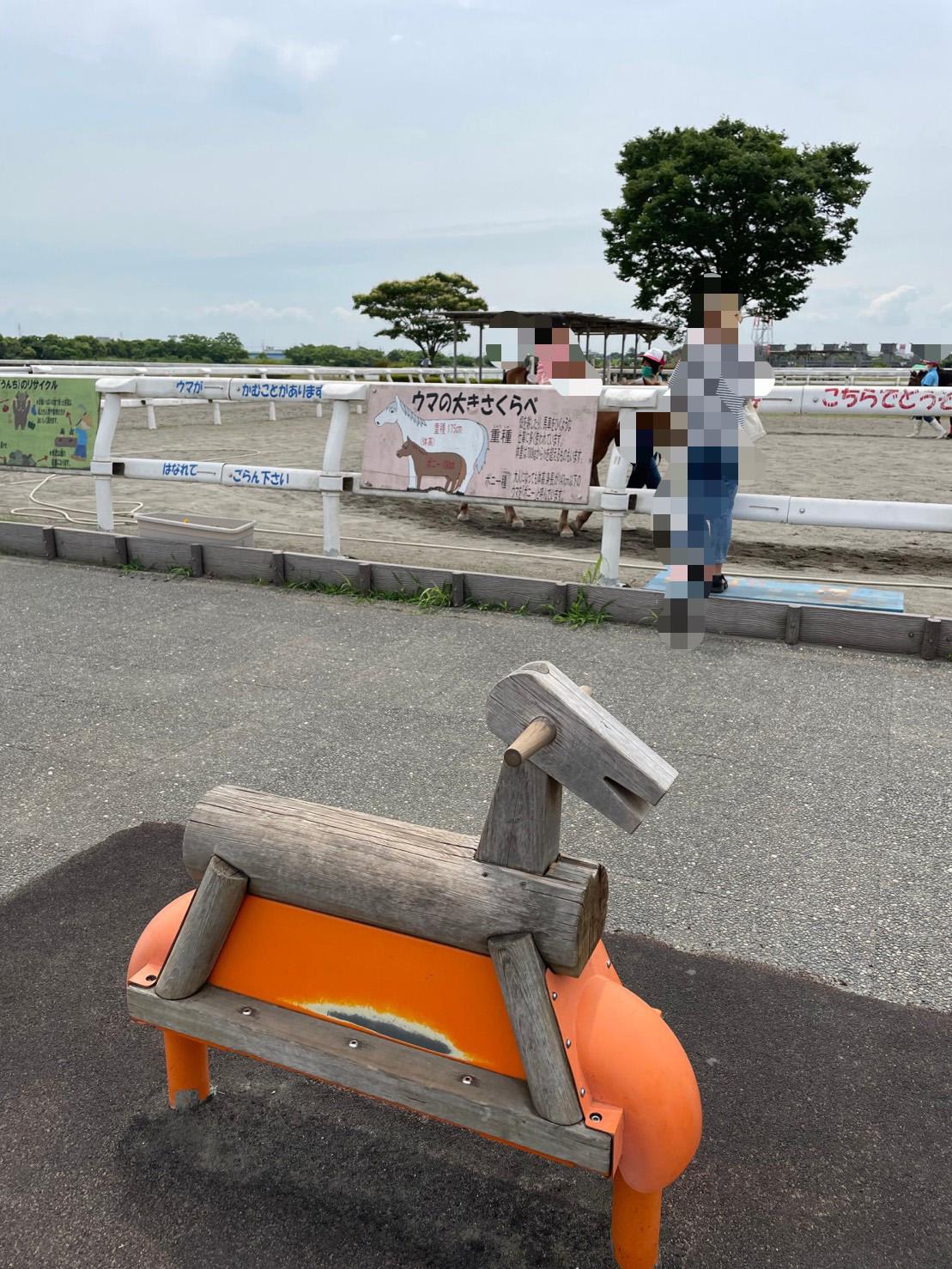 ポニーの形の椅子の写真