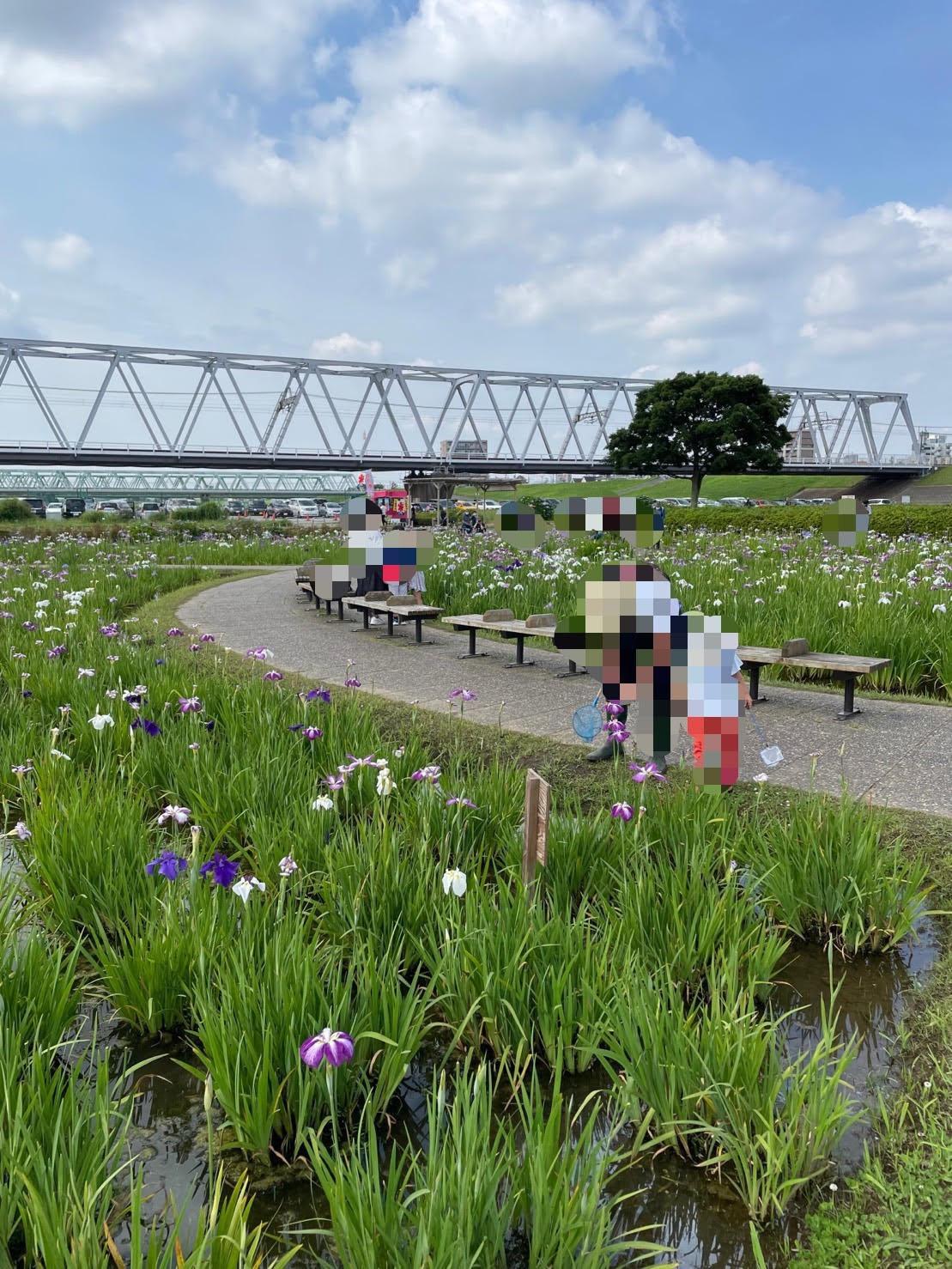 京成線の電車が走る陸橋の写真