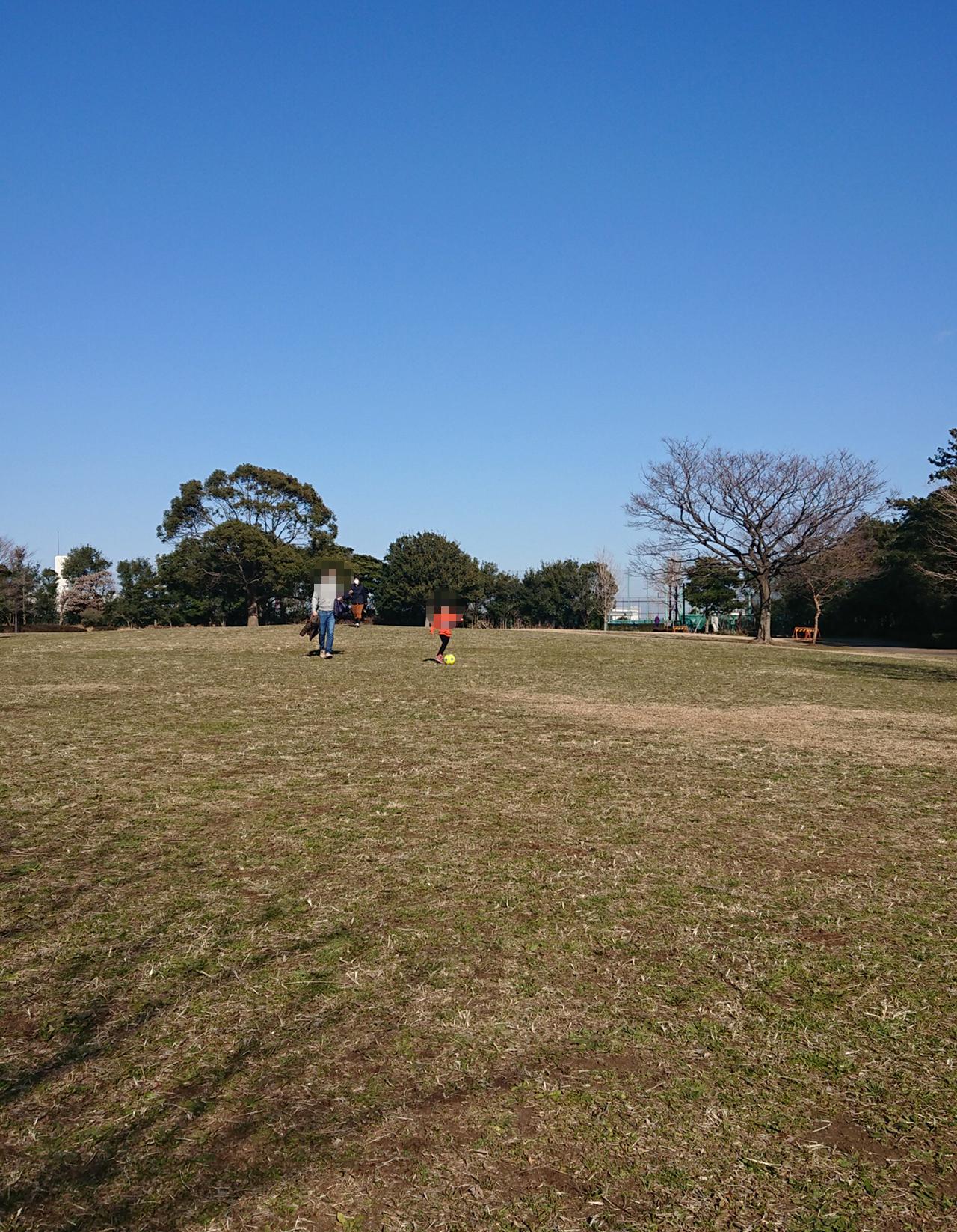 芝生広場でサッカーをする写真