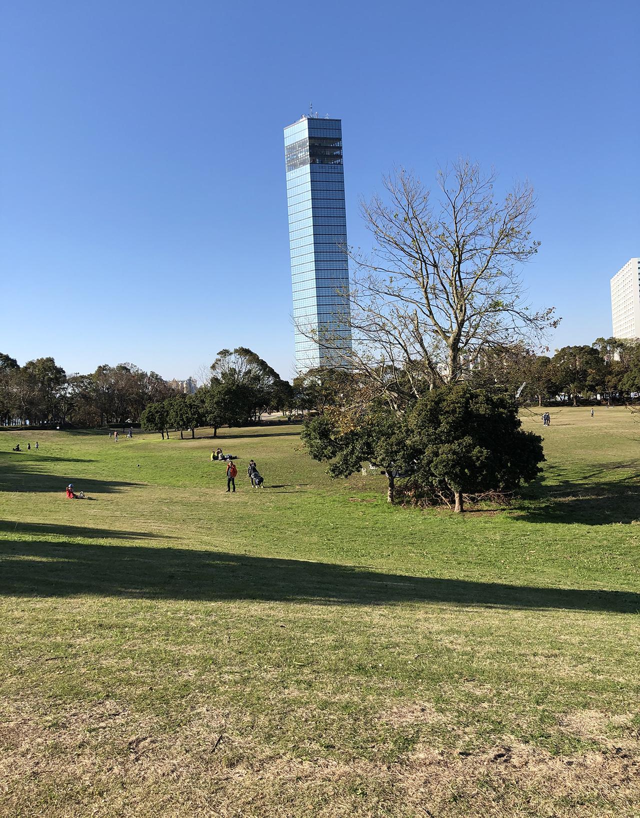 広場から見える千葉ポートタワーの写真